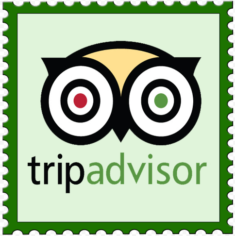 How to travel? Trpadvisor knows everything about travelling